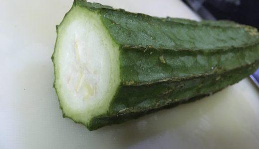 【フィリピンお野菜】パトラ(へちま)がトロトロで美味しい