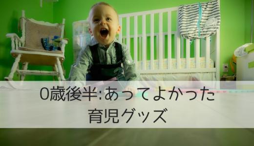 【0歳6ヶ月〜1歳の育児グッズ】日本から持ち込んだもの・マニラで買ってよかったもの