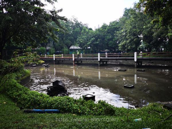 池の水ぜんぶ抜く大作戦マニラ