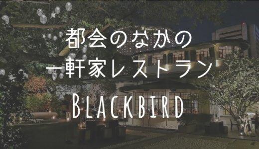 【Blackbird・ブラックバード】マカティの真ん中に現れる一軒家の欧風料理レストラン
