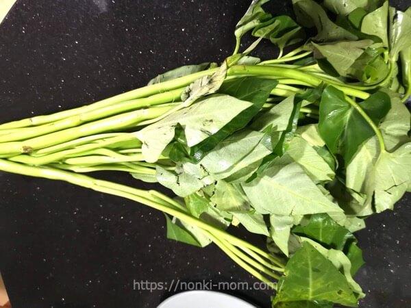 フィリピンのお野菜 カンコンKangkong(空芯菜)